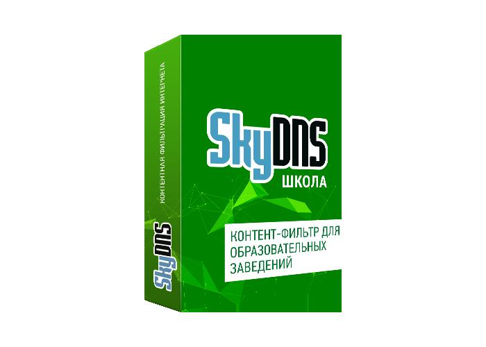 Купить SkyDNS Школа